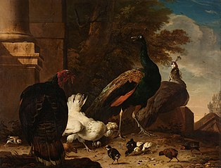 A Hen with Peacocks and a Turkey
