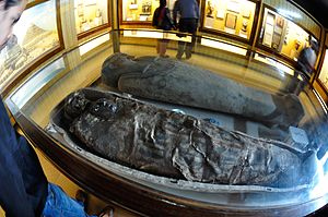 Indian Museum - Egyptian human mummy, about 4,000 yrs old, at Indian Museum.
