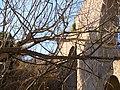 El Pont Nou, aqüeducte, Sant Pere de Riudebitlles, Detalls 18.jpg