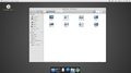 Elementary OS (developer preview).png