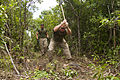 Endurance course built into jungle at Camp Hansen 131001-M-OY715-341.jpg