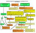 Enfermedad Celíaca - Diagrama errores diagnósticos.DIAGNÓSTICO INFANCIA.jpg