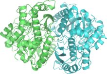 Enolase 2ONE wpmp.png