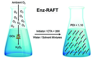 Enz-RAFT - Glucose oxidase (GOx) is used to remove oxygen from the solution, allowing RAFT polymerizations to proceed in an open vessel.