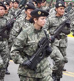 Exército – Wikipédia, a enciclopédia livre
