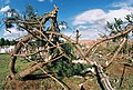 FEMA - 5124 - Photograph by Jocelyn Augustino taken on 09-25-2001 in Maryland.jpg