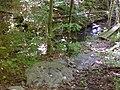 FLT M08 4.92 mi - 5 12' puncheons in ravine, 3 4x4's on 6x6 sills, on rock gabions, ~ 30 rock steps - panoramio.jpg