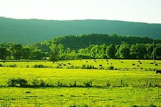Marion County, Tennessee - Farm near Powells Crossroads