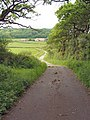 Farm lane north west of Pen-y-bryn - geograph.org.uk - 820033.jpg