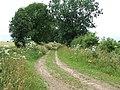 Farm track - geograph.org.uk - 890331.jpg