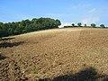 Farmland, Cadmore End - geograph.org.uk - 994366.jpg