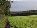 Farmland, Chase Wood - geograph.org.uk - 265706.jpg