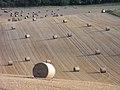 Farmland, Inkpen - geograph.org.uk - 1575412.jpg