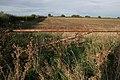Farmland on Moor Lane - geograph.org.uk - 251338.jpg
