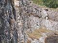 Felhagyott bányarész. Mészkő fal (ÉK). Geológus Kert. - Tata.JPG