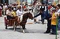 Feria de Mayo, Torrevieja 2010 (4594158517).jpg