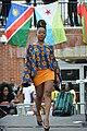 FestAfrica 2017 (36905184273).jpg