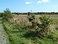 Fields at Reedstown - geograph.org.uk - 2090699.jpg
