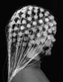 Figure 6 Image of EEG (Nunez 2002).png