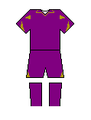 Fiorentina kit 2010 home.PNG