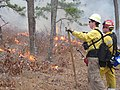Fire Pros Monitor Burn (7060829849).jpg