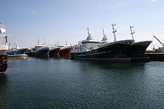 The Fraserburgh fleet