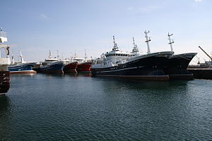 Fraserburgh - The Fraserburgh fleet