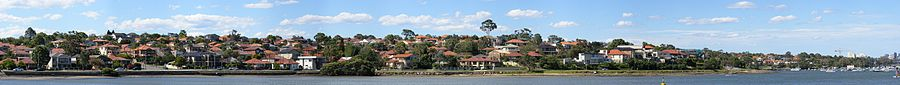 Five dock-ironcove
