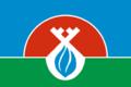 Flag of Nadymsky rayon (Yamalo-Nenetsky AO).png