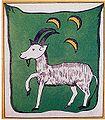 Flag of Principality of Abkhazia.jpg