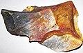 Flint (Vanport Flint, Middle Pennsylvanian; Nethers Flint Quarries, Flint Ridge, Ohio, USA) 187.jpg