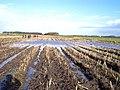 Flooded fields near Fairfield farm - geograph.org.uk - 1041098.jpg