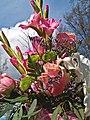 Flowers (4585529385).jpg