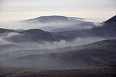 Fog over the Little Carpathians (2).jpg