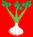 Fokhagyma (heraldika).PNG