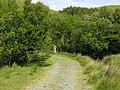 Footpath to Newydd Fynyddog - geograph.org.uk - 856783.jpg