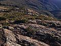 Formação rochosa de gnaisse próximo ao topo do Pico da Bandeira.jpg