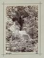 Fotografi av Shanklin Cline. Isle of Wight, England - Hallwylska museet - 106689.tif