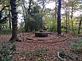 Fountain in South Hill woods.jpg