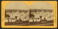 French cemetery, from Robert N. Dennis collection of stereoscopic views.png