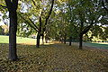 Frognerparken 20091015-02.JPG