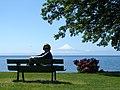 Frutillar & Osorno, X Región, Chile - panoramio - Pedro Martha.jpg