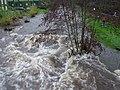 Full flow - geograph.org.uk - 781111.jpg
