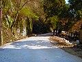Fuyan Monastery - panoramio - A J Butler (24).jpg