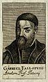 Gabriele Fallopio. Line engraving, 1688. Wellcome V0001848.jpg