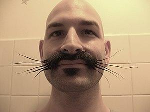 World Beard and Moustache Championships - Image: Gandhi Jones whiskers