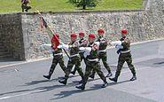 Garde du drapeau du 1er RPIMa