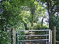 Gate into the next square - geograph.org.uk - 487121.jpg