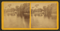 General view of Silver Springs, Fla, from Robert N. Dennis collection of stereoscopic views 2.png