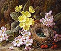George Clare - Apple Blossom, Primroses and Bird's Nest (14863195684).jpg